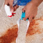 cropped picture of a person removing hard stain from a carpet